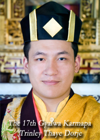 Karma kagyud buddhist centre singapore his holiness trinley thaye dorje thecheapjerseys Image collections